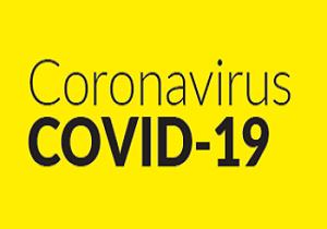covid-19-image-resized